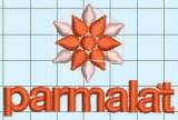 Client Embroidery - Parmalat